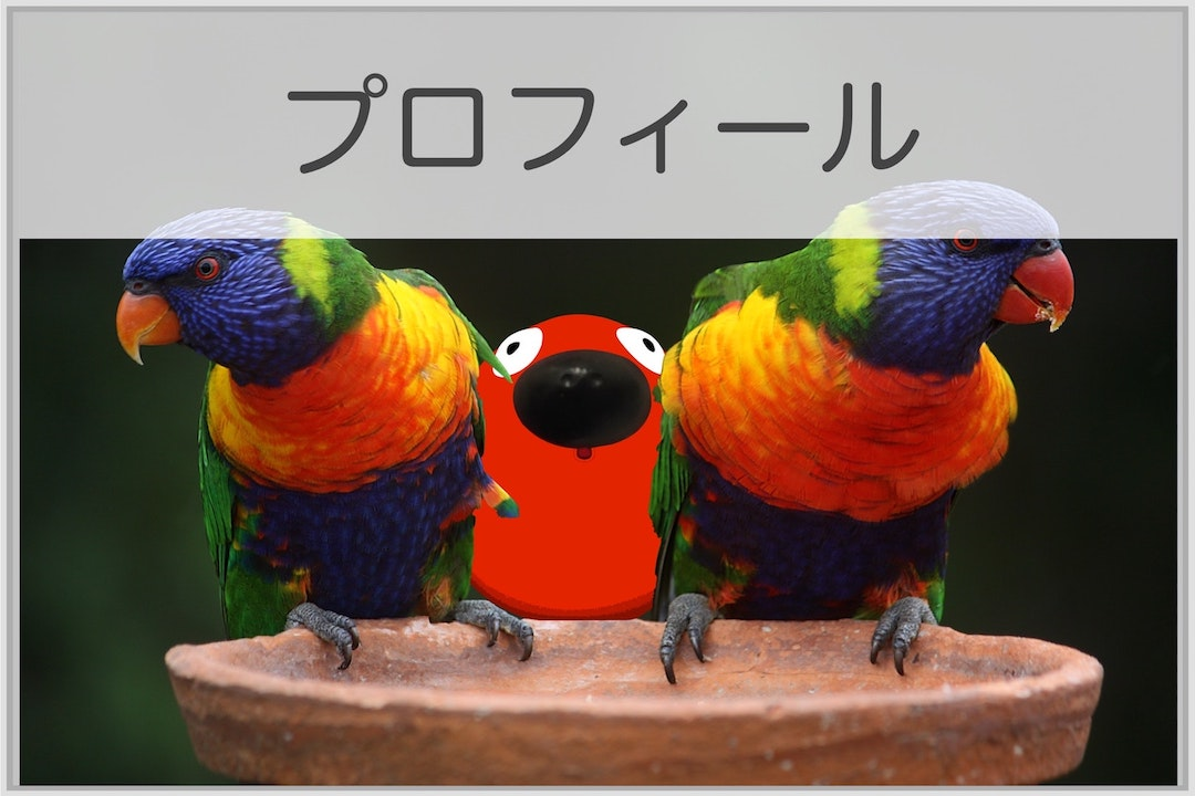 blue-geeen-and-orange-parrot